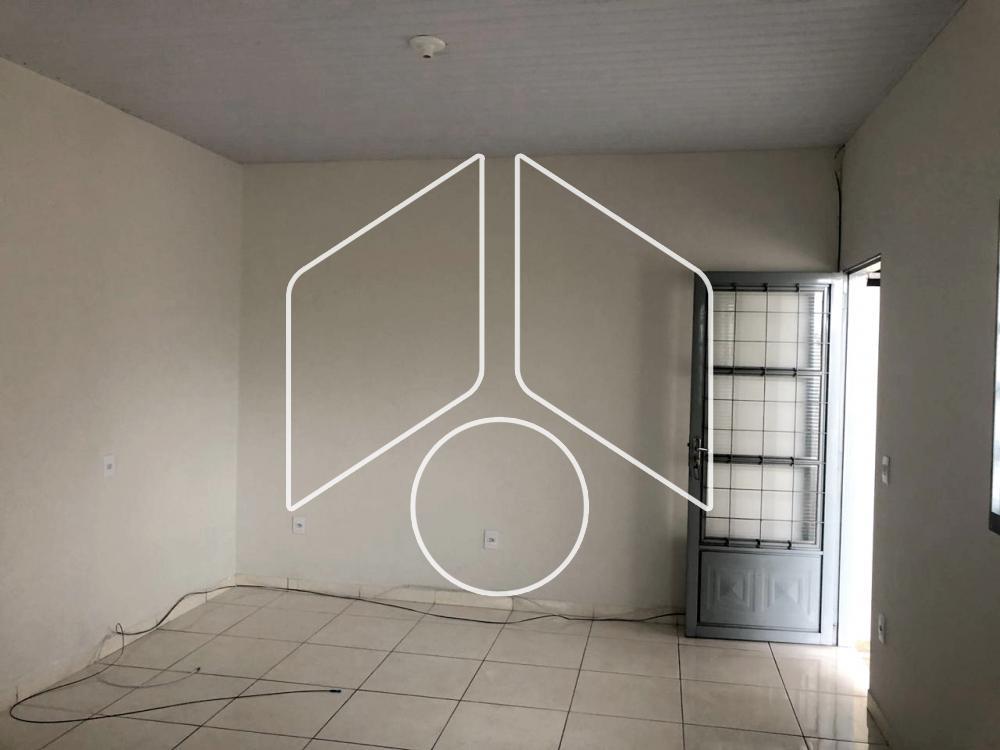 Alugar Residencial / Casa em Marília apenas R$ 790,00 - Foto 2