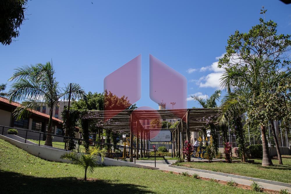 Alugar Residencial / Apartamento em Marília apenas R$ 400,00 - Foto 13